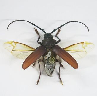 animatronic cyborg beetle