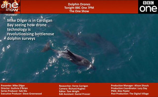 Dolphin Drones with Mike Dilger