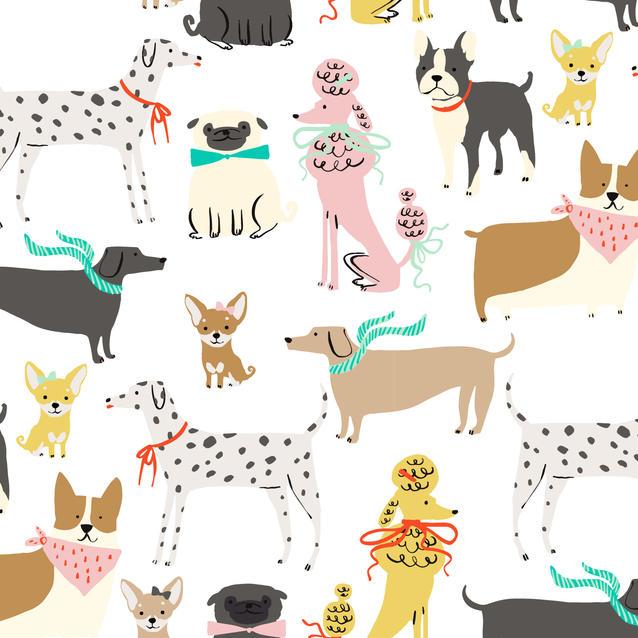 Dogs-01.jpg