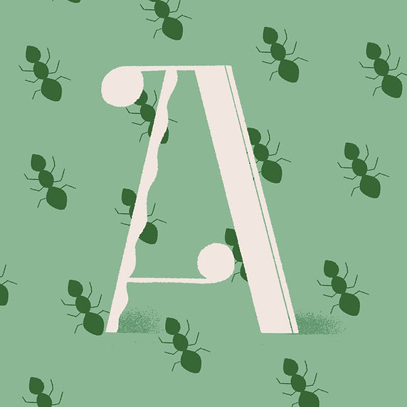 Illustrated Letter A