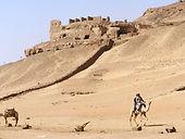 desertview.jpg