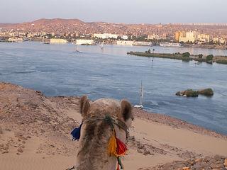 Egypte 1 123.jpg