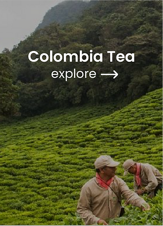 Colombia_2x.png
