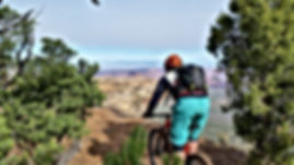 mountain-biking-2006847_1920.jpg
