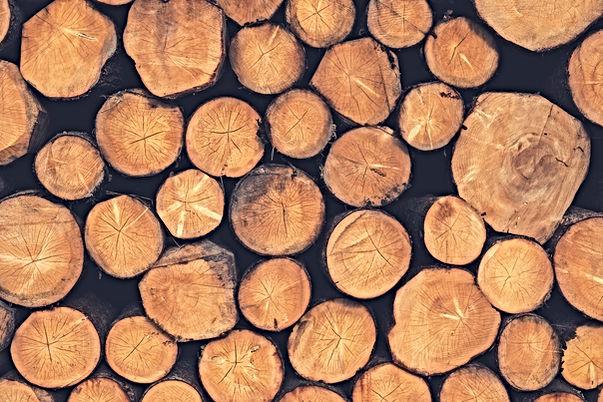 wood-1209632_1920.jpg