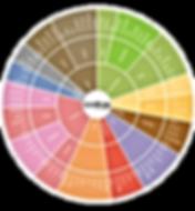 Aroma Wheel.png