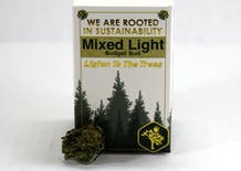 Talking Trees Mixed Light Z-Money #14 3.5g (21.78% THC)