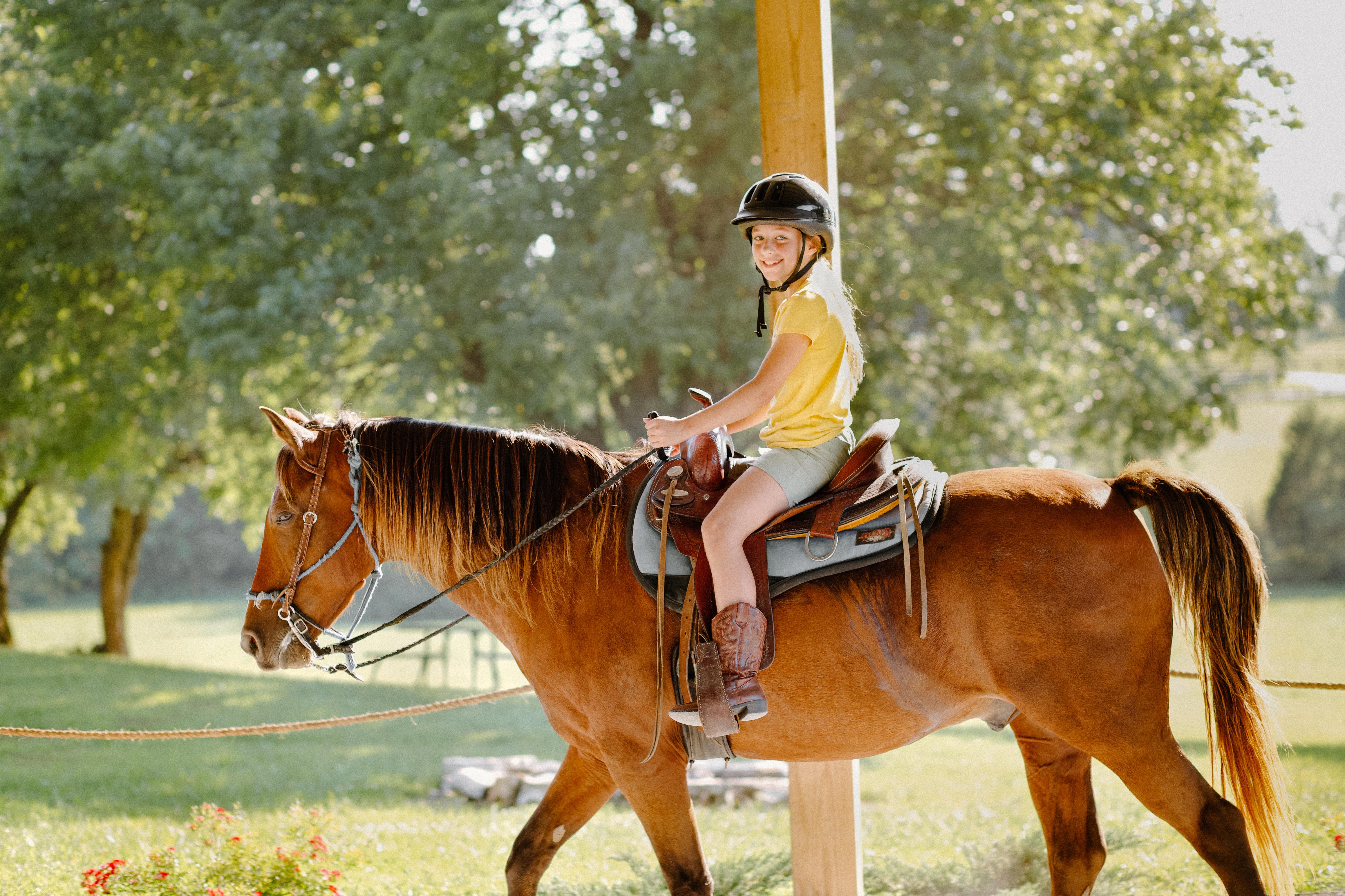 """""""Adopt"""" A Horse Program - Tuesdays"""