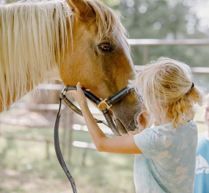 """Adopt"" A Horse Program"