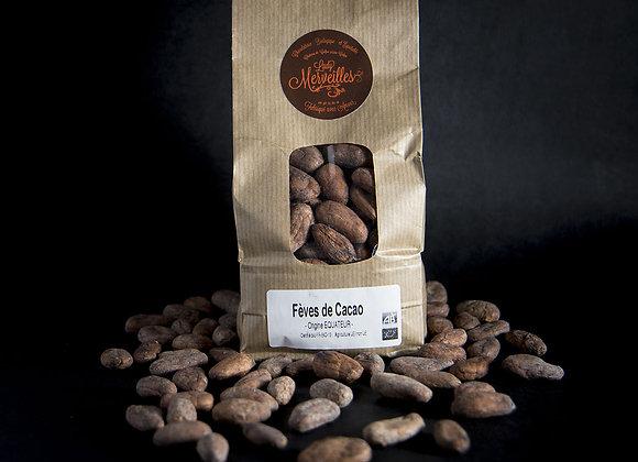 Sachet de fève de cacao 300gr