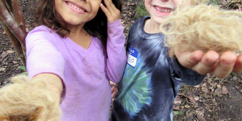 Try Out our Nature Camp for a Day! (Ages 5-7)