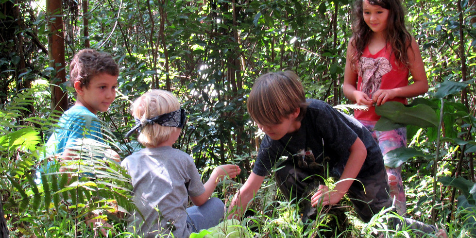 Spring Break Na'au Nature Camp (Ages 6 to 12)~ Monday-Friday