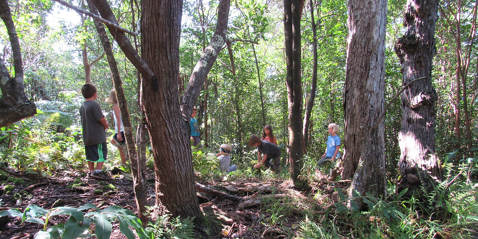 Monday~ Na'au Nature Experience (Ages 6 to 12)~Try out our Nature Camp for a day!