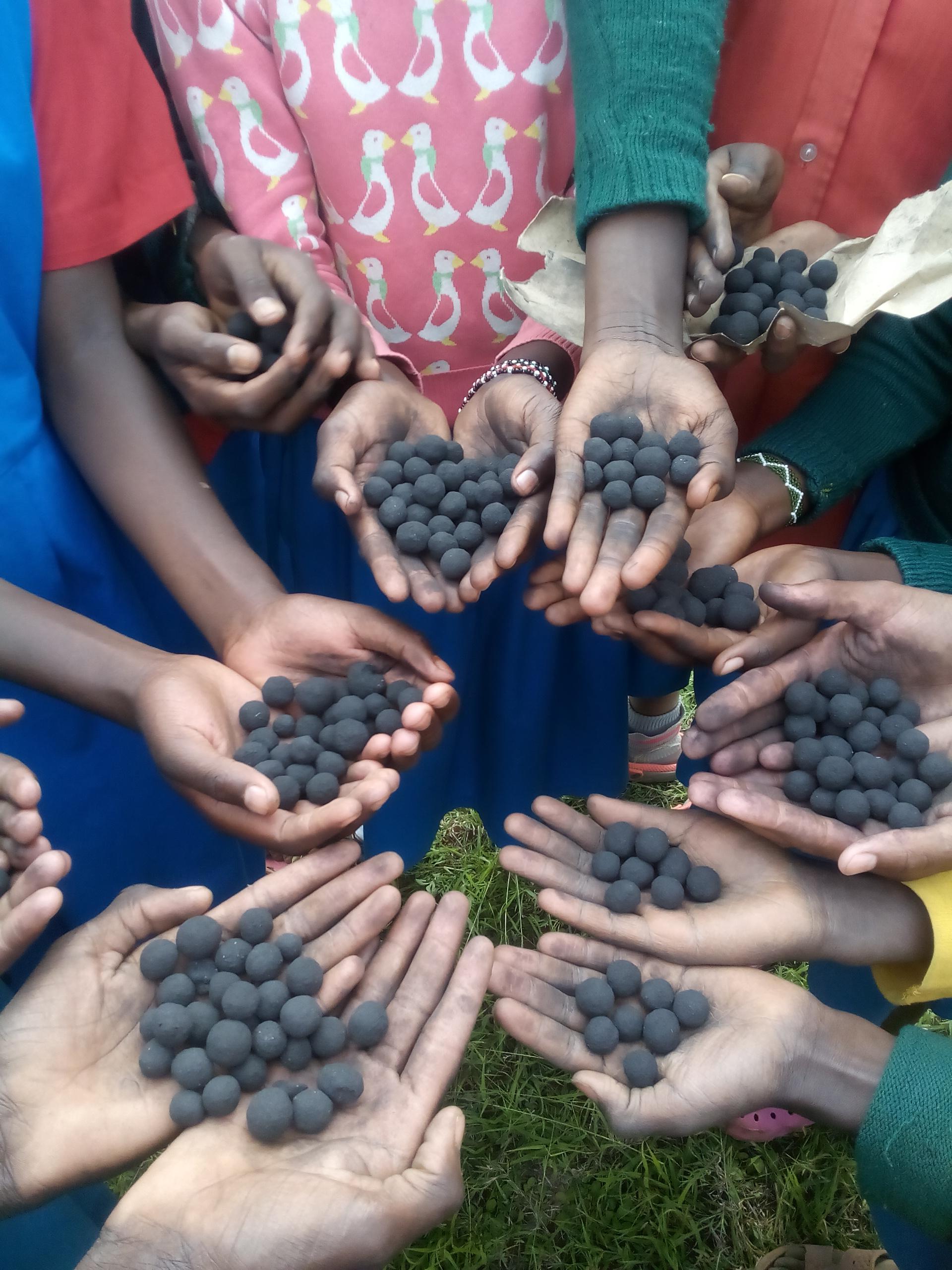 Replanting Kenya