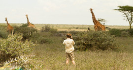 Walking with Giraffe.jpg