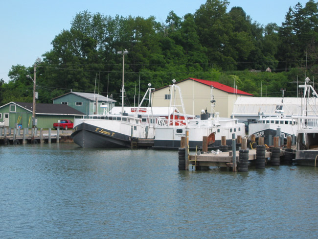 Fishing boats in Port Dover harbour.