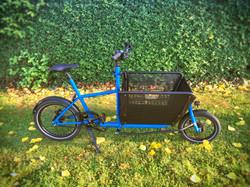 Muli Cycles