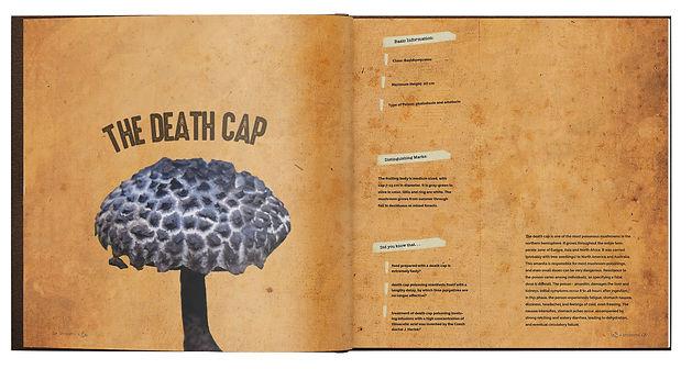 The Mushroom Book Mockup 3.jpg
