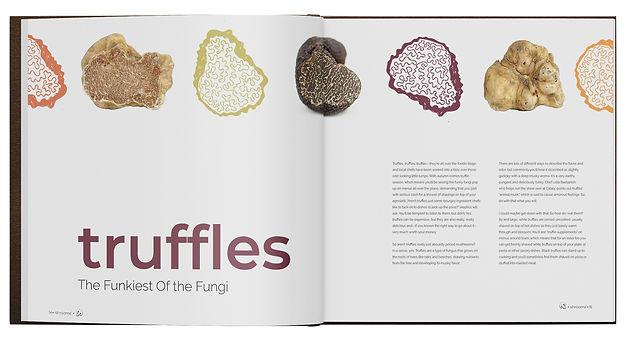 Mushroom Book Mockup 2.jpg