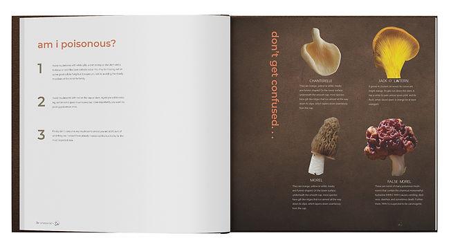 The Mushroom Book Mockup 4.jpg