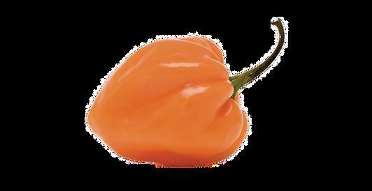 92-926039_habanero-pepper-habanero-chili
