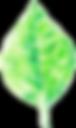 tctsy-lehti-transparent-net.png