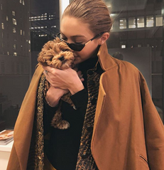 These Sunglasses Are Bella And Gigi-Worthy
