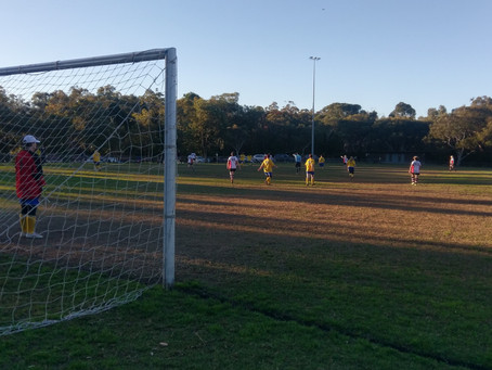 Mimosa Oval Artificial Pitch proposal - sign the petition in support NOW!