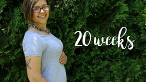 Bumpdate: 20 Weeks