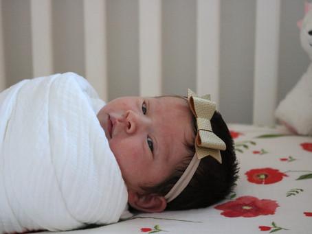 The birth of baby Wren (part 2)