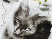 「秋桜とネコ」