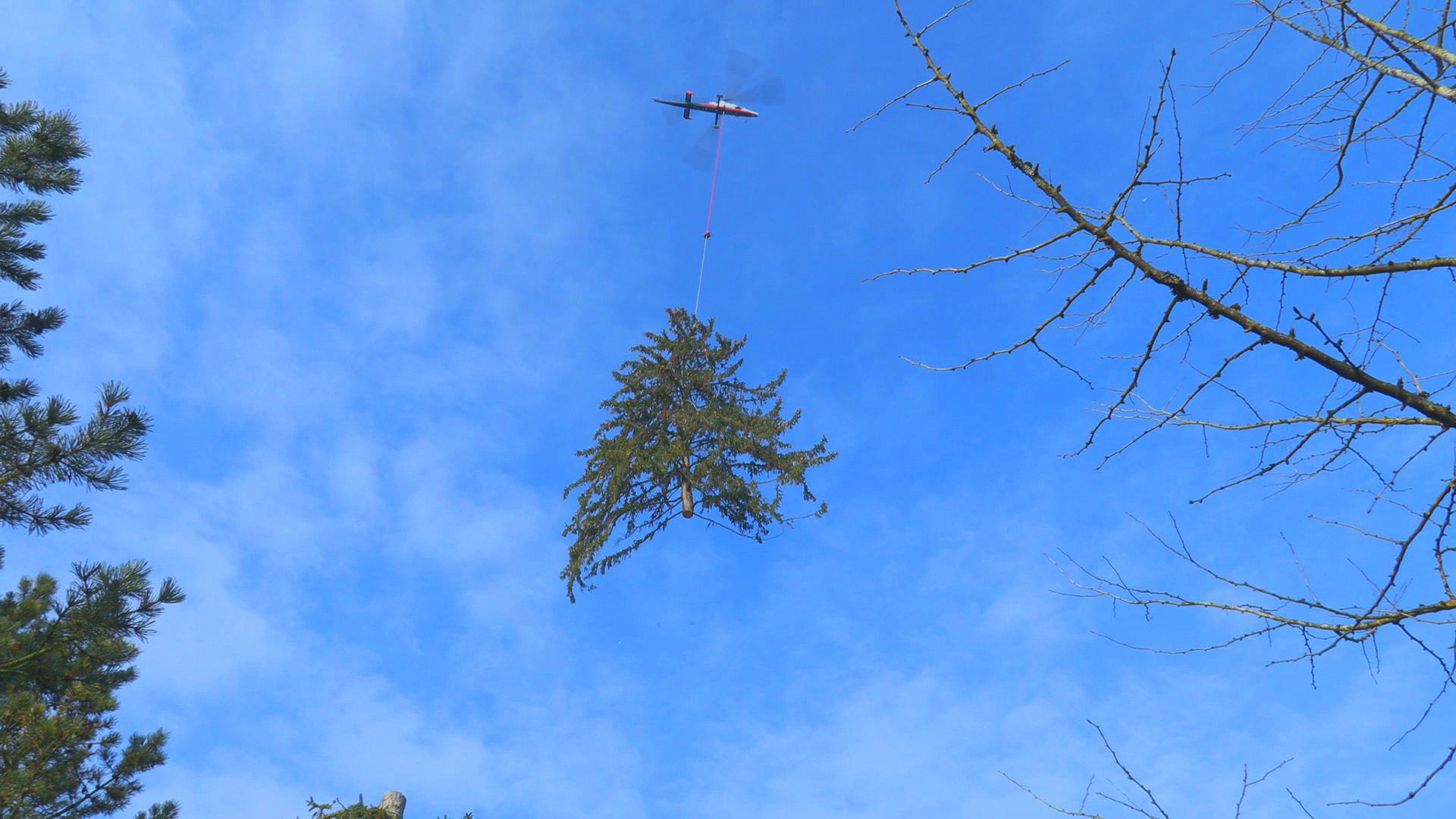 K-Max Einsatz Rotex Helicopter AG