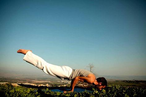 yoga handstand inversion