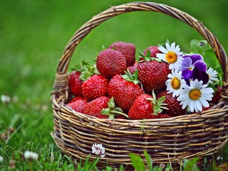 Cura de fresas, un estímulo para el cuerpo