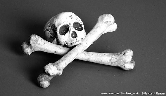 Skull%20and%20Crossbones%20_edited.jpg