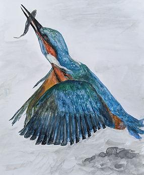 Kingfisher - Peter Waine - As I go a wan
