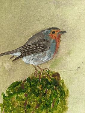 Robin - Peter Waine - As I go a wanderin
