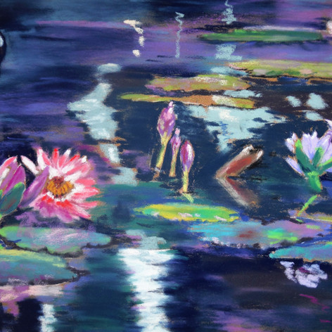 Lilly Pads in Central Park,