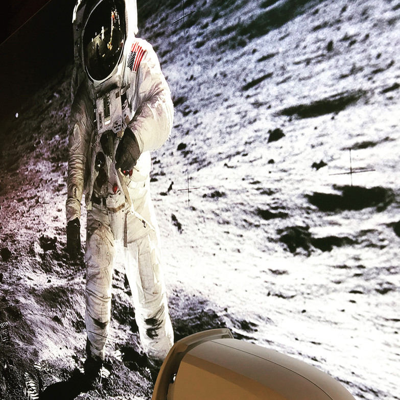 E. Aldrin on the moon