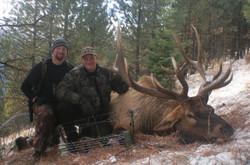 31581-Burnworth Moose