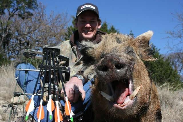 18622-boar 2008