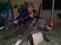 2263-Harvey Pig