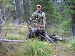 29849-peterson moose