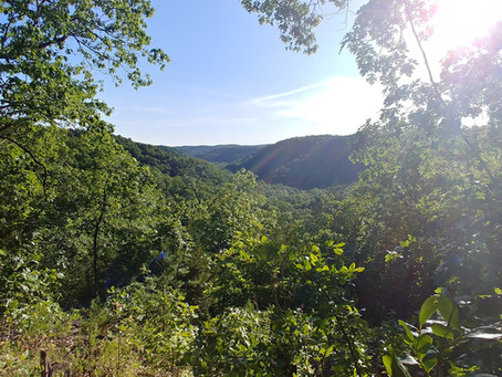 At Home in the Ozarks