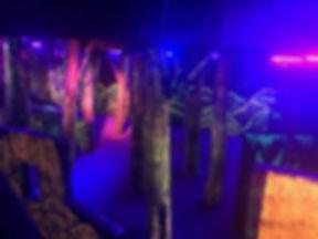 Arena - trees 2.jpeg