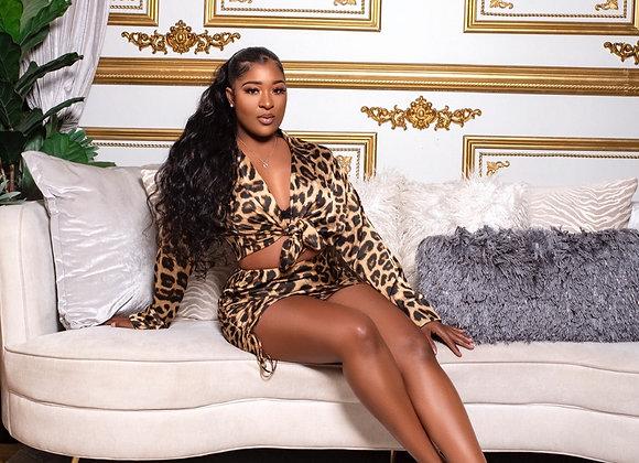 Cheetah Sister