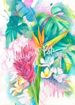 BotanicalParty
