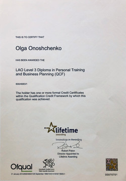 Leve3 certificate .JPG