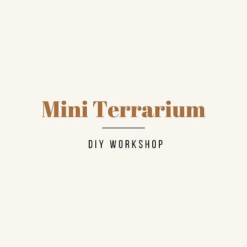 Mini Terrarium Night