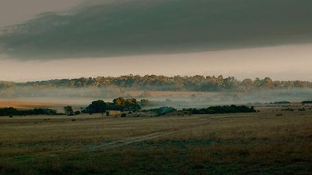 The Farm.jpg